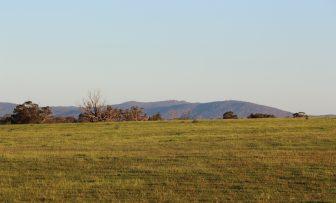 GRDC Grains Research Update, Maitland SA